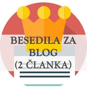 Mesecno pisanje in vodenje bloga - 2 objavi, članka