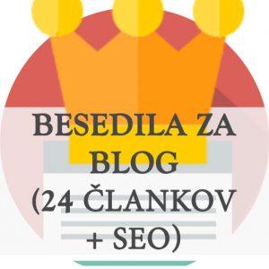 Letno vodenje pisanje bloga 24 člankov objav + seo