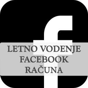 Letno vodenje facebook strani