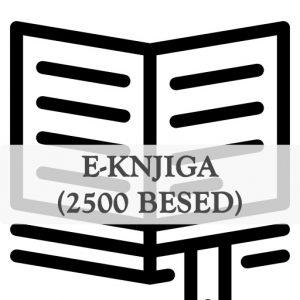 Pisanje e-knjig e-book 2500 besed